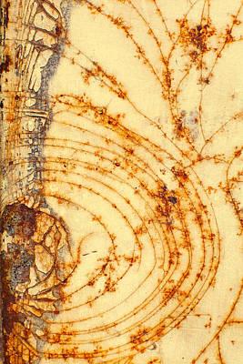Rusted Web Print by Rebecca Skinner