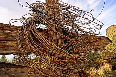Photograph - Rusted Wire by Kerri Mortenson