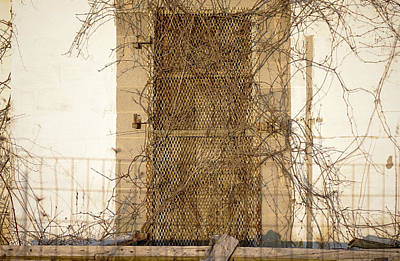 Rusted With Abandon Art Print by Susan Maxwell Schmidt