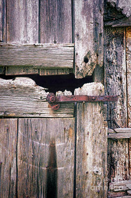 Photograph - Rustic Barn Door by Jill Battaglia