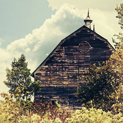 Digital Art - Rustic Barn by Susan Stone