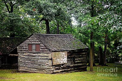 Photograph - Rustic Cabin by Luther Fine Art