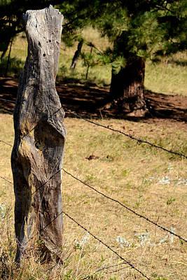 Photograph - Rustic Dakota Fence by Dakota Light Photography By Dakota
