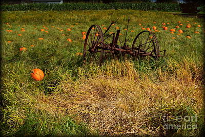 Indiana Photograph - Rustic Farm Equipment  by Amy Lucid