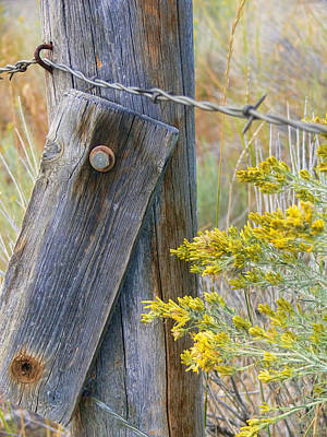 Rustic Fence And Wild Flowers Montana Print by Jennie Marie Schell