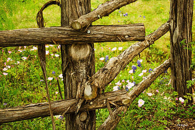 Photograph - Rustic Fence With Wildflowers by Allen Sheffield