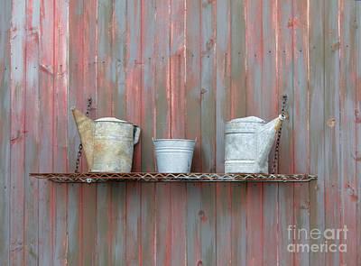 Rustic Garden Shelf Art Print by Ann Horn