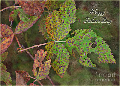 Photograph - Rustic Leaves Father's Day Card I by Debbie Portwood