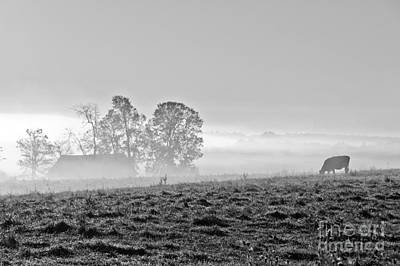 Photograph - Rustic Morning In Black And White by Cheryl Baxter