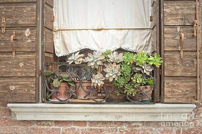 Photograph - Rustic Murano Window by Prints of Italy