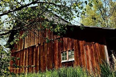Photograph - Rustic Old Barn by Sadie Reneau