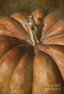 Rustic Pumpkin Print by Elena Nosyreva