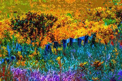 Rustic Rainbow Art Print by Brian Stevens