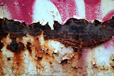 Photograph - Rustic Scabs by Deborah  Crew-Johnson