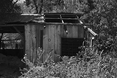 Photograph - Rustic Shed 2 by Richard J Cassato