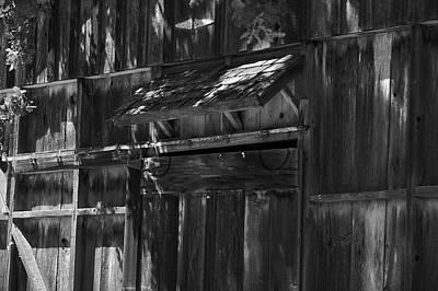 Photograph - Rustic Shed 3 by Richard J Cassato