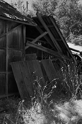 Photograph - Rustic Shed 4 by Richard J Cassato