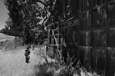 Photograph - Rustic Shed 5 by Richard J Cassato
