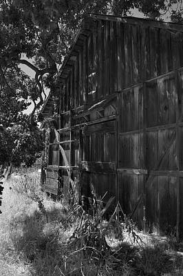 Photograph - Rustic Shed 6 by Richard J Cassato