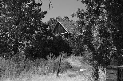 Photograph - Rustic Shed 7 by Richard J Cassato