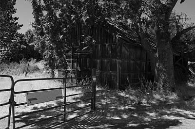 Photograph - Rustic Shed 8 by Richard J Cassato