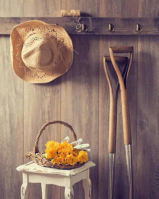 Hanging Basket Photograph - Rustic Shed by Amanda Elwell