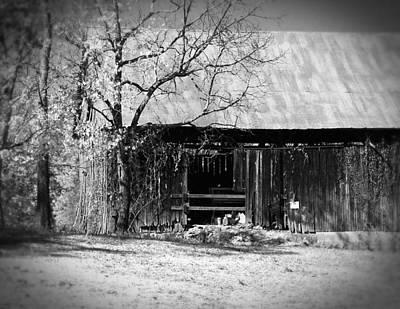 Rustic Tennessee Barn Art Print by Phil Perkins