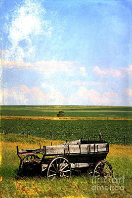 Photograph - Rustic Wagon by Alyce Taylor