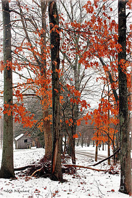 Art Print featuring the photograph Rustic Winter by Todd Blanchard