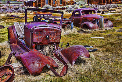 Rusty Autos Art Print by Garry Gay