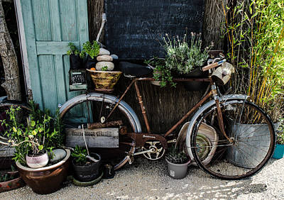 Photograph - Rusty Bicycle by Dany Lison