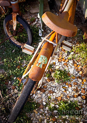 Rusty Bike Bumper Art Print by Sonja Quintero