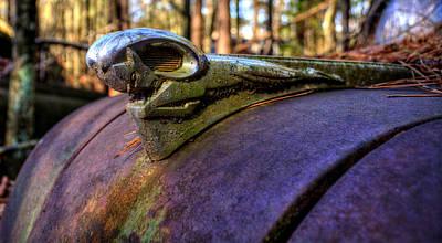 Pine Needles Photograph - Rusty Dodge Ram by Greg Mimbs