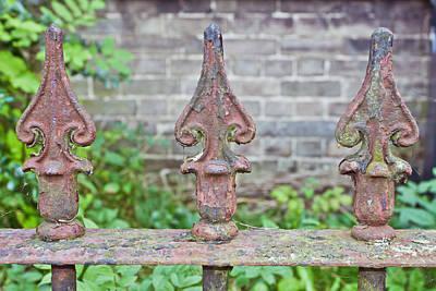 Rusty Fence Spikes Art Print by Tom Gowanlock