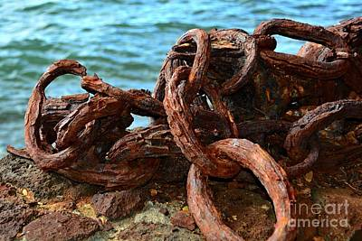 Photograph - Rusty Links by Patrick Witz