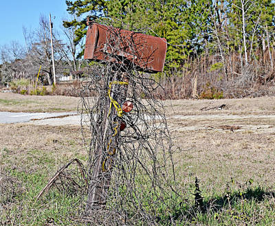 Photograph - Rusty Mailbox by Linda Brown