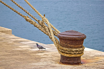 Photograph - Rusty Mooring Bollard With Ship Ropes by Brch Photography