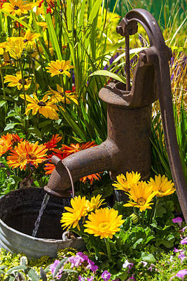 Overgrown Photograph - Rusty Old Water Pump by Garry Gay