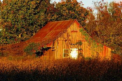 Rusty Roof Barn Original by Barbara Jernigan