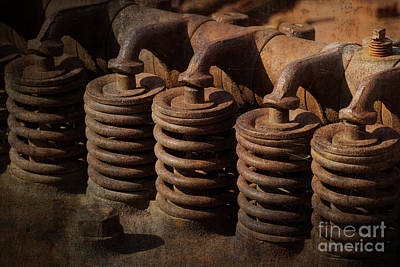 Photograph - Rusty Springs by Inge Riis McDonald
