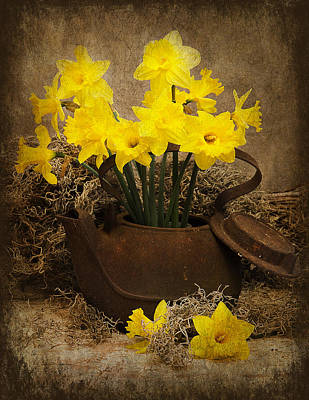 Photograph - Rusty Teapot/daffodils by Trudy Wilkerson