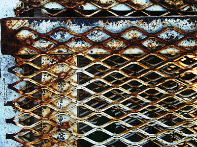 Photograph - Rusty Tessellation by Dale Jackson