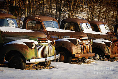 Rusty Trucks Art Print