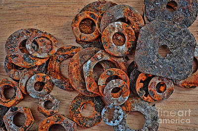 Rusty Washers Art Print by Debbie Portwood