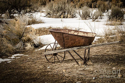 Photograph - Rusty Wheelbarrow by Sue Smith