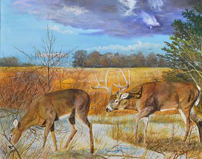 Rut - Whitetail Deer Original