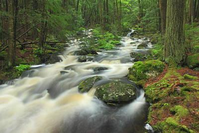 Rutland Photograph - Rutland Brook High Water by John Burk