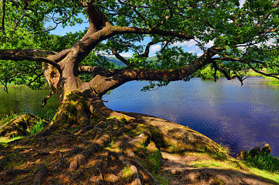 Photograph - Rydal Water Cumbria by Graham Hawcroft pixsellpix