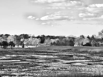 Photograph - Rye Countryside by Marcia Lee Jones