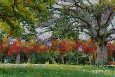 Digital Art - Ryrie Park In Braidwood by Fran Woods